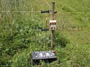 Электрическая изгородь 1
