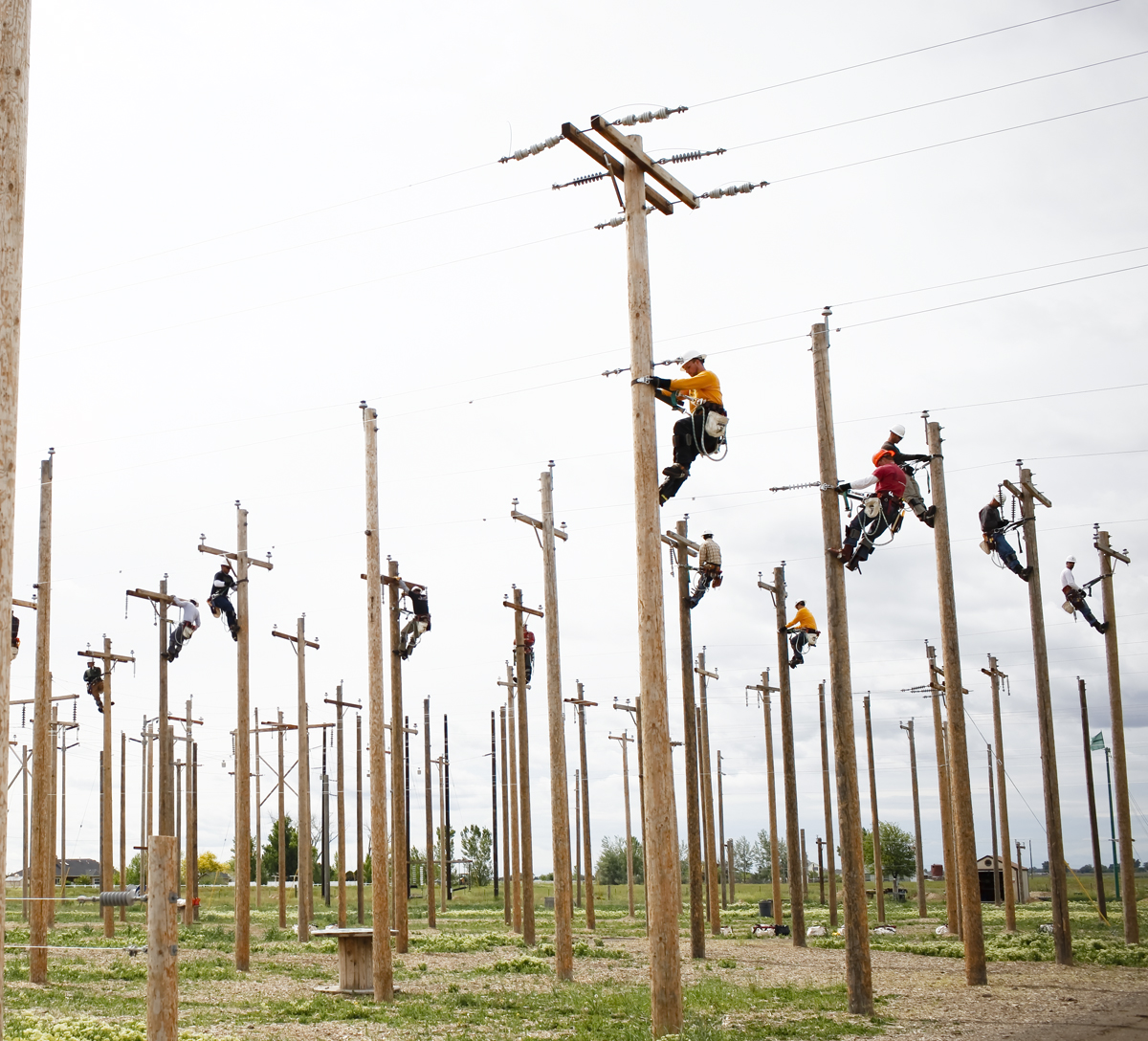 Деревянные опоры для ЛЭП 3
